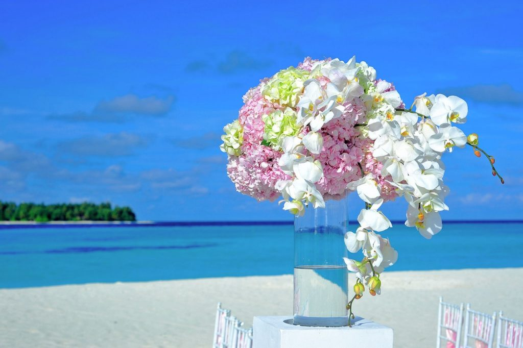 Wir lieben Farbe!!! Nicht nur in der Natur ...
